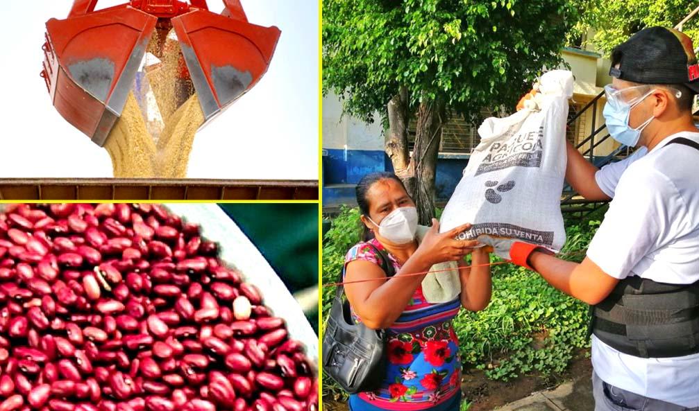 Gobierno asegura reserva de alimentos durante la pandemia y el resto del año
